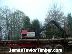 james taylor loading logs on knuckle boom