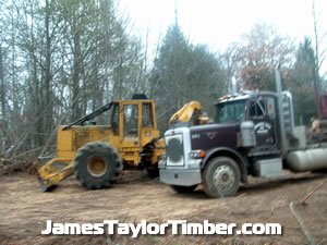 skidder and log hauler 18 wheeler diesel