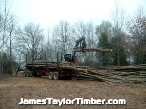 two logs loaded sulphur springs tx